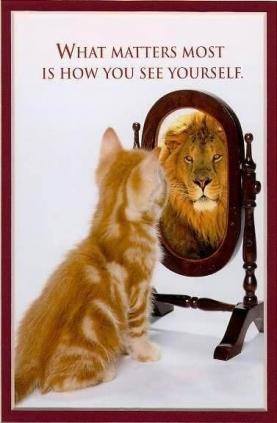 kitten_lion.JPG