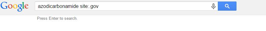 google_gov.PNG